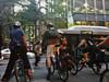Bike Sydney Twilight Ride