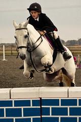Show Jumping, Patrington-8241