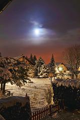 Snowy night photo by Tambako the Jaguar