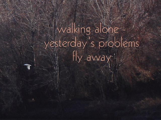 walkingaway