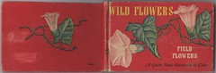 Wild Flowers (Back & Front Cover) photo by wakest