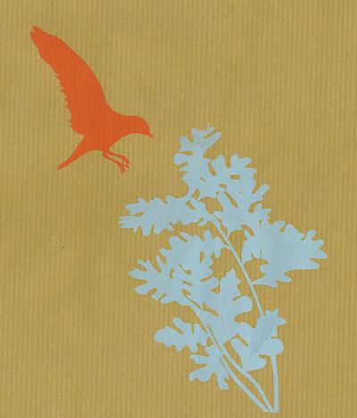 birdie 02 kraft