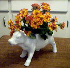 Cow Creamer with Lantana