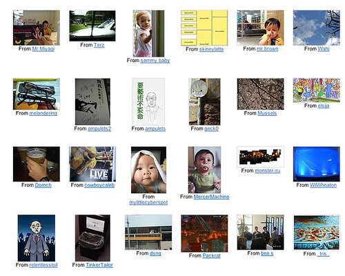 My Flickr contacts page