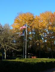 OSU Flaggen