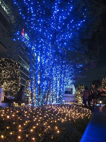 {11-19} lights in shinjiku