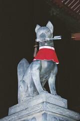 Un dels kitsune que protegeix el temple