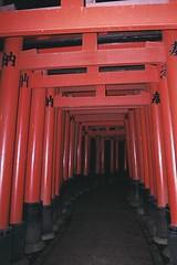 mil toriis més