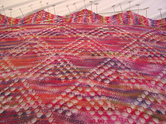 Catharina Rose - blocking