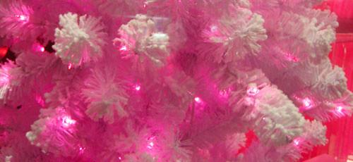 i [heart] pink bush!