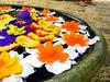 Flower Tub 2