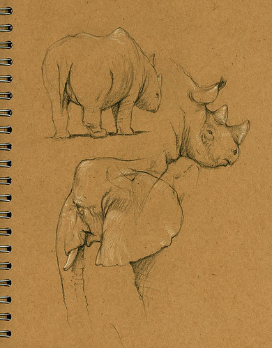elephant_rhino