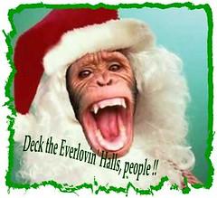 monkey-santa