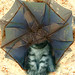 Olmogomo (olmogomo.bitacoras.com) - Fotomatón *Lo Imprevisto* - gato y paraguas