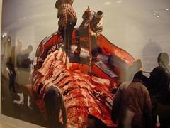 国家地理展览 杀鲸鱼