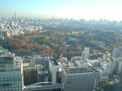 Shinjuku051210
