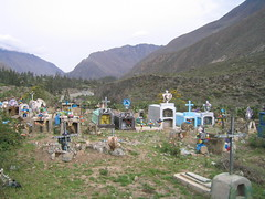 Colorful Graveyard