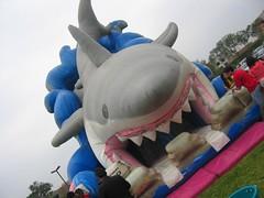 Tiburon inflable