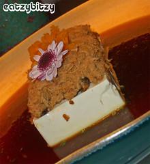 XY Cold Tofu