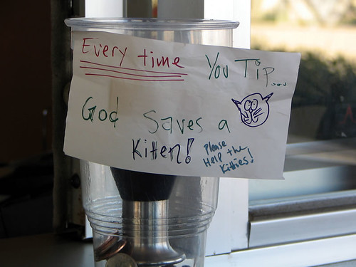 Tip Jar Sign - God Saves a Kitten