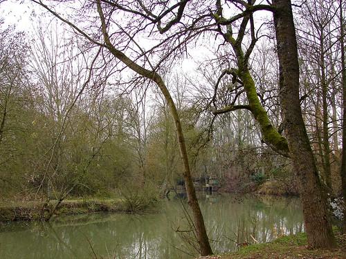 Loire Dec 05 130