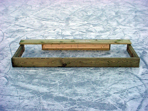 Pond Hockey Goal 229