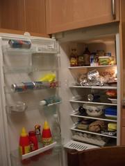 Küche_Kühlschrank
