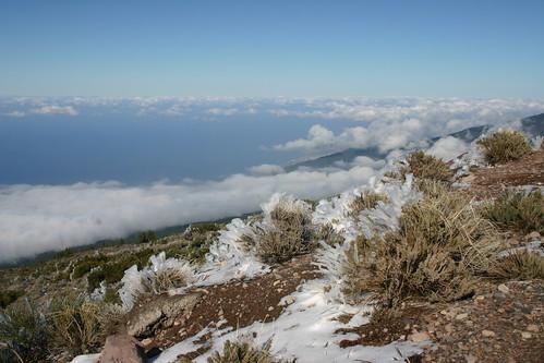 Above the clouds in Parque Nacional del Teide