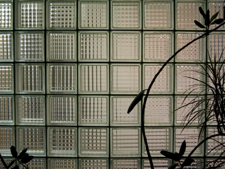 glass brick with plants