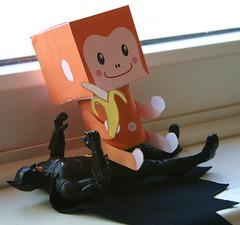 Flickr Monkey takes Batman!