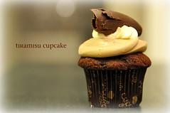cupcake - tiramisu photo by Ann McLeod Images