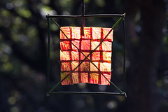 Stitched Red Leaf Sun Square photo by escher is still alive