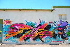 RIME IN TUCSON 2 photo by Joe Ism