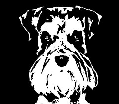 Schnauzer Black & White Stencil Dog Art Print photo by Pupaya