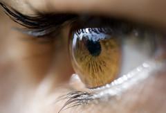 The Eye photo by César Augusto Serna Sz