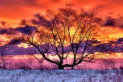 Leslie Spit Sunrise photo by ~EvidencE~