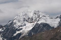 Königsspitze (3859m)