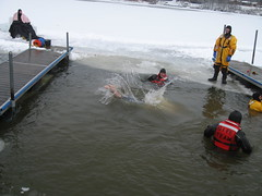 Josh Holmes doing the Polar Plunge