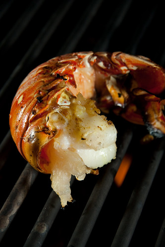 Grilled Lobster Trail