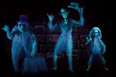 Disneyland - Grim Grinning Ghosts photo by Matt Pasant