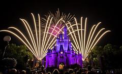 Magic Kingdom - Make a Wish, and do as Dreamers do photo by Cory Disbrow