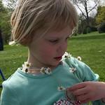 My Daisy chain<br/>18 Apr 2009