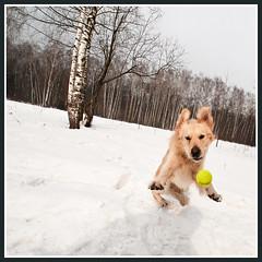 Jump photo by hardcorish
