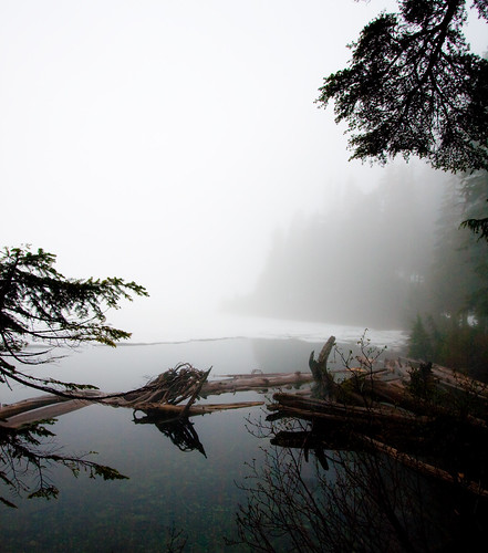 Frozen & Foggy Lake Serene