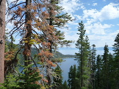 View above Emerald Bay