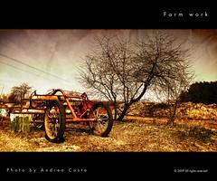 Farm work photo by Andrea Costa Creative