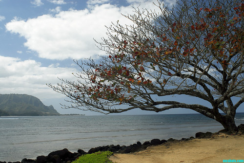 Kauai189