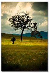 Leaving The Farm photo by Matthew Stewart | Photographer
