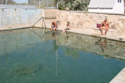 Hobo Pool