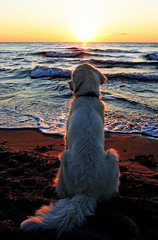 Ditte - queen of the beach photo by Ingrid0804